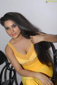 Kavya Singh Spicy Pics in Yellow Dress