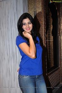 Shamili Agarwal at Neerus Emporio