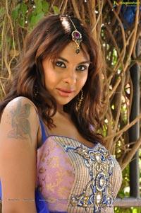 Srilekha Reddy Mallidi in Saree