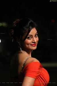Green Signal Shilpi Sharma Hot Photos