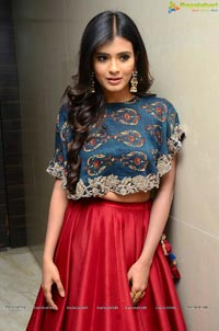 Actress Hebah Patel