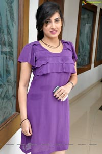 Veda Archana at Santosham Awards 2012 Press Meet
