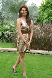 Diana Hayden Photos
