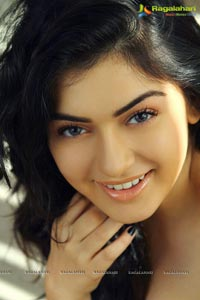 Hansika turns 21 Years
