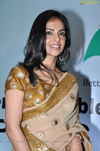 Richa Pallod in Saree Photos