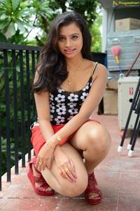 Telugu Cinema Jai Ho Heroine Priyanka