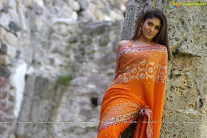 Nayanthara hot saree think, that