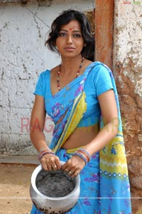 Teertha Spicy Gallery