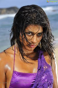 Shraddha das hot bikini opinion you