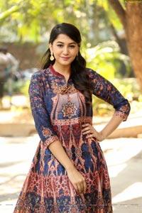 Simran Telugu Heroine