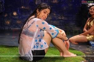 Sexy Charmi in Mayagadu