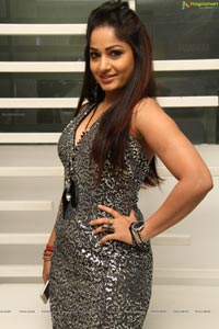 South Indian Actress Madhavilatha