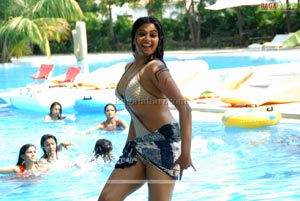 Priyamani Bikini Photo Gallery