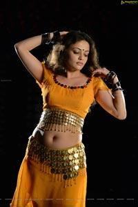 Sneha Ullal Action 3D Hot