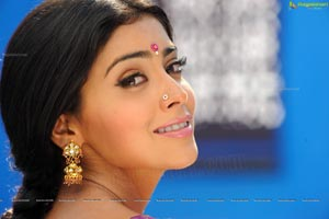 Hot Shriya in Pista - High Definition Photos
