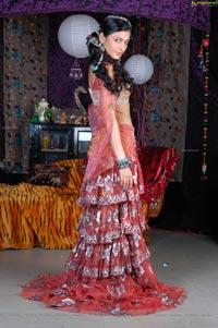 Beautiful Shruti Haasan High Definition Photos