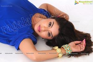 Payal Ghosh Spicy Studio Shoot