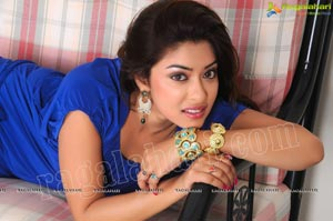 Payal Ghosh Spicy Studio Shoot