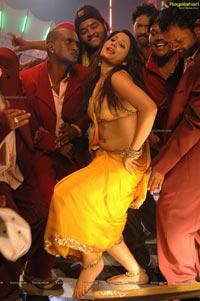 Kareena Kapoor look alike Item Girl Ajju Photos