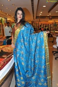 Hyderabad Model Diksha Panth in Saree Photos