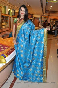 Hyderabad Model Diksha Panth in Saree Photos