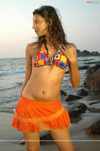 Rinku Gosh Photo Gallery
