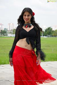 Lakshmi Rai in Thaandavam - High Resolution Posters