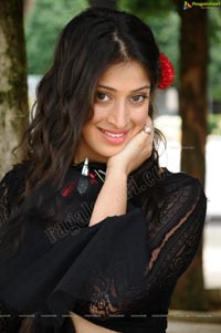 Lakshmi Rai in Thaandavam - High Resolution Posters