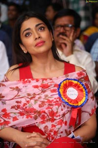 Shriya Saran High Definition