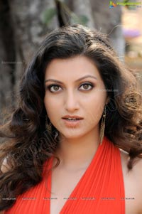 Hamsa Nandini