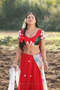 Veena Malik in Nagna Satyam