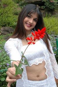 Nicole Photo Gallery