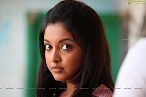 Tanushree Dutta Print Size Photos