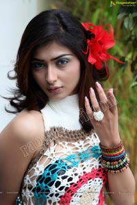 Gorgeous Nikitha Sharma Studio Shoot