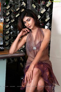 Indian Female Model Nikitha Sharma