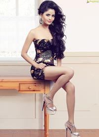 Gehana Vasisth Portfolio