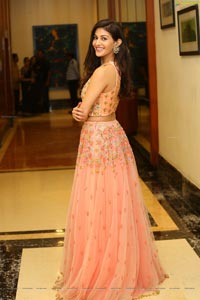 Amyra Dastur Telugu Heroine