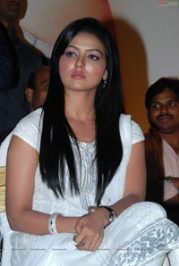 Sana Khan at Kalyan Ram Kathi Platinum Disc Function