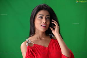 Kollywood Actress Shriya Saran