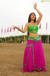Richa Gangopadhyay Hips