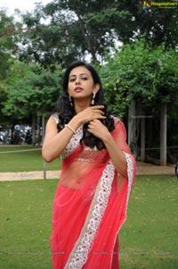 Rakul Preet Singh Venkatadri Express Audio