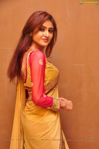 Sony Charishta in Saree Photos