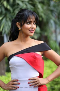 Amala Paul at Dongodochadu Press Meet