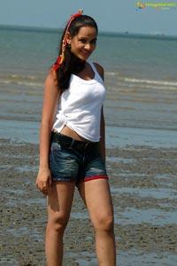 Actress Nisha Kothari