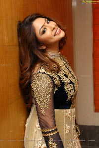 Payal Ghosh High Resolution Pictures