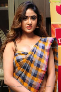 Sony Charishta in Saree