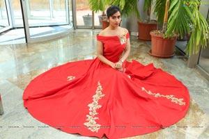 Preethi Singh Model
